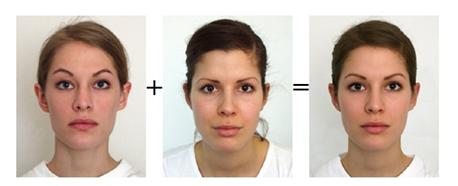 facial-averages